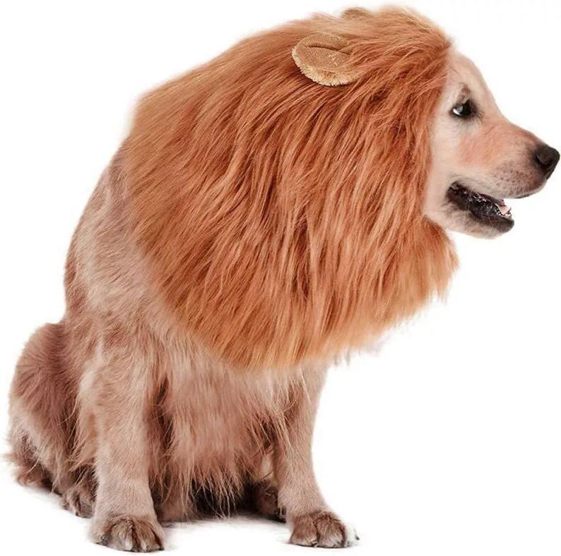 Грива для собаки